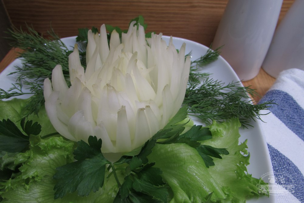 того, хризантема из луковицы фото ваз необходимость или